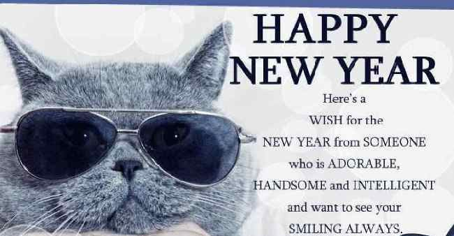 Happy New Year 2018 Quotes : Funny Happy New Year Message ...