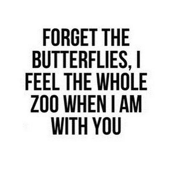 Quotes About Love : Inspiring Love Quotes U2013 U201cforget The Butterflies, I Feel  The Whole Zoo When I Am U2026
