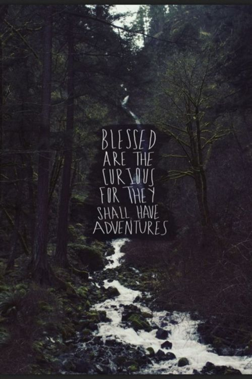 Life Quotes Blessed Are The Curious For They Shall Have Adventures