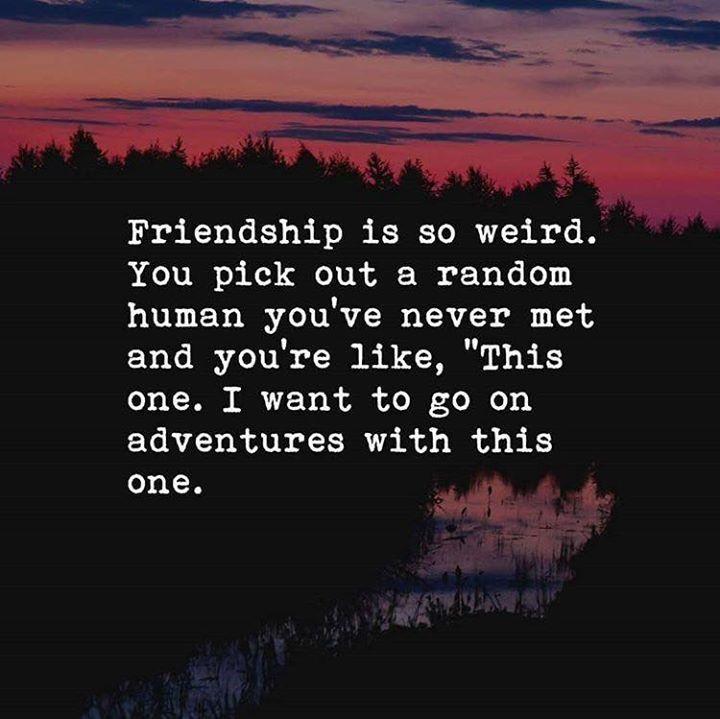 Life Quotes Friendship Is So Weird Via Httpsifttt2ey7hg4